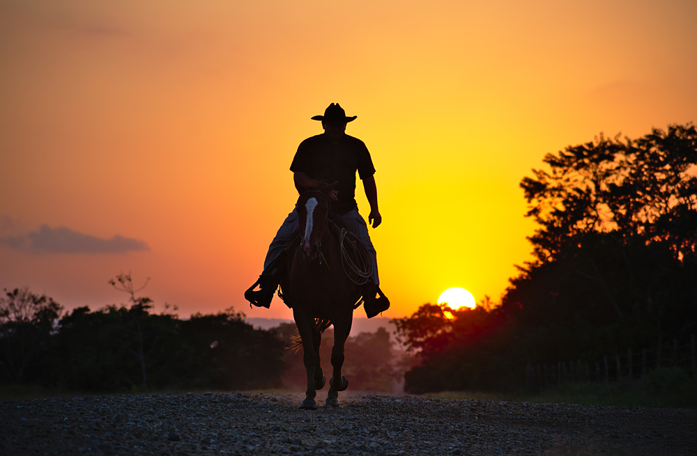 I always thought you were meant to ride off into the sunset, not away from it. It must be a sunrise.
